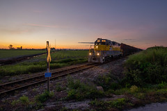 Sugar (Cane) at Sunset (ajketh) Tags: ussc scfe us united states sugar corporation cane train freight railroad last emd rebuild gp11 311 ic illinois central nathan p5 rural sunset horizon moore haven load out fl florida clewiston