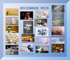 December 2016 at a glance (Elisafox22 slowly beating the Shingles!) Tags: elisafox22 december 2016 collage snapshot images summary thumbnails border elisaliddell©2016