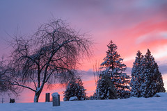 January 1st Sunset (Harry2010) Tags: cemetary winter sunset newyearsday trees tombstone snow newwestminster