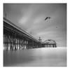 Seafront (paulantony2) Tags: lee nikon d7100 seascape fyldecoast uk longexposure pier blackpool birds gull sea
