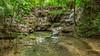 47. Around Palenque, Chiapas, Mexico-14.jpg (gaillard.galopere) Tags: 06000000 06006000 06006006 america amérique chiapas couleur environnement gaillardgalopere iptcsubjects mex mx mexico mexique palenque ressourcesnaturelles rivières travel vegetations voyage water agua arboles arbre arbres bright brillant brillante cascada cascade claro color colorful coloré eau environmentalissue forest foret green landscape landscapephotography loverlander lustroso naturalresources outdoor outdoorphotography overland overlanding paysage racines river rivers roots tree trees verde vert waterfall wood