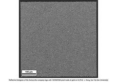 2D hologram SEM