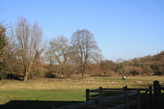Water Meadows (My photos live here) Tags: winchester hampshire water meadows hospital of st cross almshouse tree grass sky field noble poverty england south downs national park canon eos 1000d belgarum