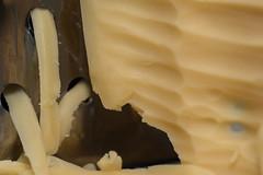 Shredded Cheese (NedraI) Tags: dutchcheese shreddedcheese macro cheesegrater cheese semisoftcheese macromondays saycheese