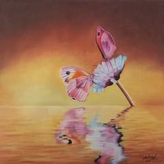 Reflected (da's art) Tags: derwent luminance polychromos surreal waterreflection flower butterflies coloredpencils traditionalart artwork