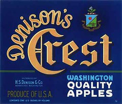 "Denisons Crest Blue • <a style=""font-size:0.8em;"" href=""http://www.flickr.com/photos/136320455@N08/20849015904/"" target=""_blank"">View on Flickr</a>"