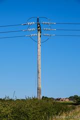20150906-DSCF0053 Electric Supply Poles Inkberrow Worcestershire.jpg (rodtuk) Tags: uk england industrial technology misc places kit worcestershire b24 midlands xt1 inkberrow phototypes roderickt roderict 2015365