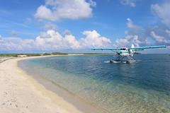 IMG_4090 (alauvstad01) Tags: usa us unitedstates florida keywest floridakeys drytortugasnationalpark luftfart dehavillandotter