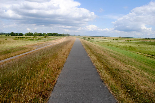 bike path on the Elbe dike - Jun 19