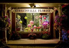 streetsville florist (Peter Cabral Photography) Tags: flowers ontario canada colour art beautiful night canon 2470mm streetsville canon5ds cabralphotography florisr