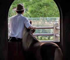 mi amigo? (himisterpadilla) Tags: horse barn caballo pony establo
