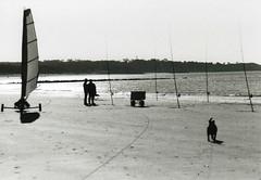 Scène de plage en hiver (delenda_cartago_est) Tags: sea dog chien mer fish photo blackwhite seaside fishermen noiretblanc gul pêche pêcheurs pche charàvoile yatching borddemer pcheurs charˆvoile