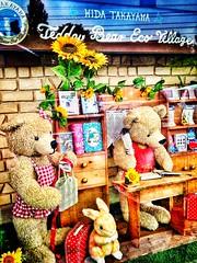 Teddy Bear Eco Village (dpjrugby) Tags: bear rabbit japan museum teddybear sunflower takayama gifu ecovillage hidatakayama teddybearecovillage