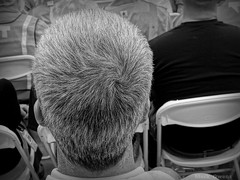 Do you ever get the feeling that someone is staring at the back of your head? (mark owens2009) Tags: chairs head meeting saltpepper grayhair