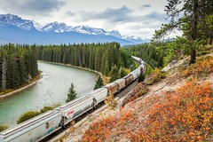 Canadian Pacific Rail (Kirk Lougheed) Tags: railroad autumn mountain canada fall water forest train river landscape nationalpark outdoor canadian alberta banff bowriver banffnationalpark canadianrockies canadianpacificrail bowvalleyparkway stormmountainviewpoint
