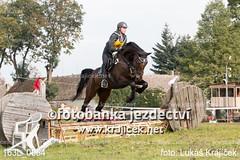 163L_0064 (Lukas Krajicek) Tags: military czechrepublic cz kon koně vysočina vysoina southbohemianregion blažejov dvoreček všestrannost dvoreek