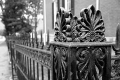On the Fence (Jane Inman Stormer) Tags: blackandwhite monochrome fence iron decorative border indiana historic explore madison explored