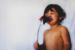 Beware of tickling roses (VeniceJoanNikole) Tags: family las vegas flowers light shirtless two portrait favorite baby flower cute texture love girl rose hair asian born hawaii toddler play heart natural princess sweet background nevada innocent daughter adorable personality nv curly simplicity innocence rae inside reno miss florals playful hapa smelling happa mitchie italitan flilipino
