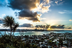 another view of sunset (samir rafsan) Tags: city sunset summer sky urban tree nature clouds twilight cityscape image auckland nz astounding