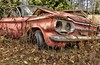 McLean's XXXX (martinaschneider) Tags: old fallleaves ontario fall abandoned car rust rockwood wreckers mcleans