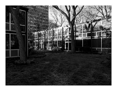 160503_0385_160503 181213_oly_S1_detroit (A Is To B As B Is To C) Tags: aistobasbistoc usa detroit michigan roadtrip travel olympus stylus1s bw lafayettepark ludwigmiesvanderrohe ludwighilberseimer alfredcaldwell urbanrenewal 1959 urbanism architecture landscape towerblock towers townhouses