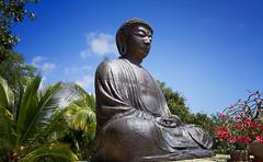 The Great Buddha of Lahaina (priyaswtc) Tags: buddha lahaina amitabha amida maui hawaii jodomission
