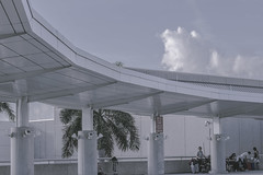IMG_0128 (Rickard Nilsson) Tags: fortlauderdale airport hollywoodinternational miami flordia usa travel architecture pale pastel lines structure fly white steel minimal tree plant palm line canon canon700d 700d 50mm chrome passengers life sky clouds cloud blue bluesteel texture modern