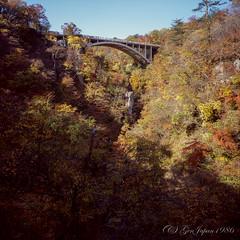 20161105-04 (GenJapan1986) Tags: 2016 fujifilmgf670wprofessional fujifilmvelvia100f フィルム 宮城県 東北地方 紅葉 鳴子峡 鳴子町 日本 japan miyagi film 6x6 風景 landscape bridge