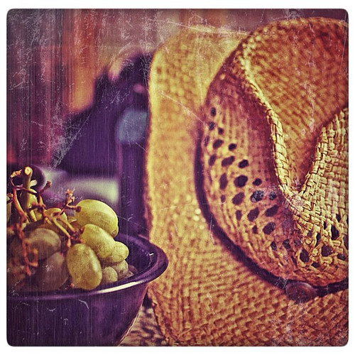 "Hat And Grapes • <a style=""font-size:0.8em;"" href=""http://www.flickr.com/photos/150185675@N05/31664468115/"" target=""_blank"">View on Flickr</a>"
