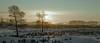 A67R5237 (Andrew Bee 1dx) Tags: 亚洲 中国 内蒙古自治区 呼伦贝尔盟 牙克石 森林 木屋 天际 天空 荒野 雪地 山 画意 意境 色彩 云 炊烟袅袅 晨雾 佳能 广角镜头 广阔天地 日出 光影 逆光