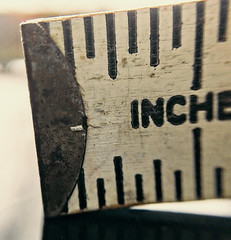 Trying to measure up. (katerha) Tags: macromondays corner ruler inch measure