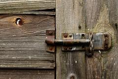 Eye spy (Apionid) Tags: bolt shed eye imprisoned incarcerated nikond7000 werehere hereios january 2017 wood knothole peephole
