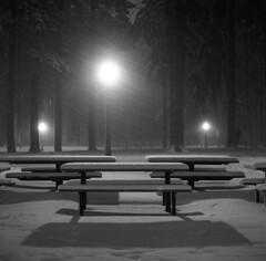 (Zeb Andrews) Tags: hasselblad film filmphotography mediumformat 6x6 kodaktrix snow winter nighttime blackwhite fa