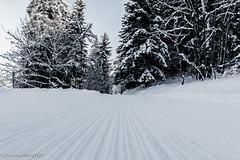 Chemin rainuré (Deathscythe42) Tags: tokina1116f28 paysage landscape rhônealpes noiretblanc nature eos70d neige valmorel snow canon blackandwhite winter mountain