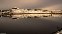 Winter reflections. (AlbOst) Tags: lomondhills fife snow winter reflections cold balloreservoir reservoirs