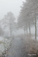 Winter 2017 (Rene Mensen) Tags: winter white water nikon nikkor nature netherlands holland rene mensen rietplas rietlanden emmen fog mist ruby3