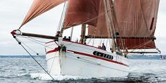 D812015 :La Belle Etoile (Brestitude) Tags: bretagne brest voilier finistère camaret rade vieuxgréement belleetoile brestitude ©laurentnevo2015