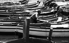 Sicilia (katia ancona) Tags: sea fisherman barche sicily pesca sicilia verga malavoglia