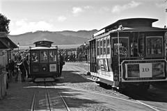 13 August 2015 - San Francisco (TimPockney) Tags: street old city summer music dog cute history classic mono nikon san francisco culture