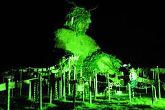 GreenMan2015_02_FotoPlus