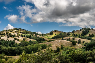 ValleDelleOrchidee,Sassano
