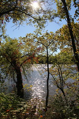 Sun through the trees (Me in Va) Tags: trees sun reflection water weather virginia warm day richmond va flare belleisle sunnyday rva jamesriver clearskies mostlysunny sunshiningthroughthetrees