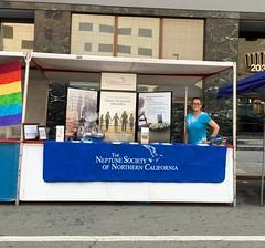 The Oakland Pride Festival 2015