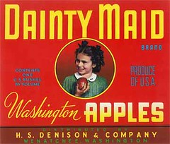 """Dainty Maid Red • <a style=""""font-size:0.8em;"""" href=""""http://www.flickr.com/photos/136320455@N08/21471719035/"""" target=""""_blank"""">View on Flickr</a>"""