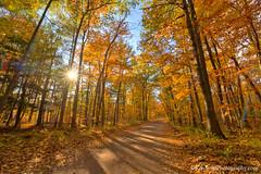 Color Tour ... backroad drive (Ken Scott) Tags: november autumn usa fall michigan fallcolors lakemichigan greatlakes sunburst dirtroad backroad hdr freshwater voted leelanau colortour 2015 45thparallel sbdnl sleepingbeardunenationallakeshore mostbeautifulplaceinamerica
