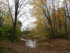 2011--10-23 Arboretum Walk 001 (elma2010 14k photos, 400k views) Tags: autumn guelph arboretum wsweekly160