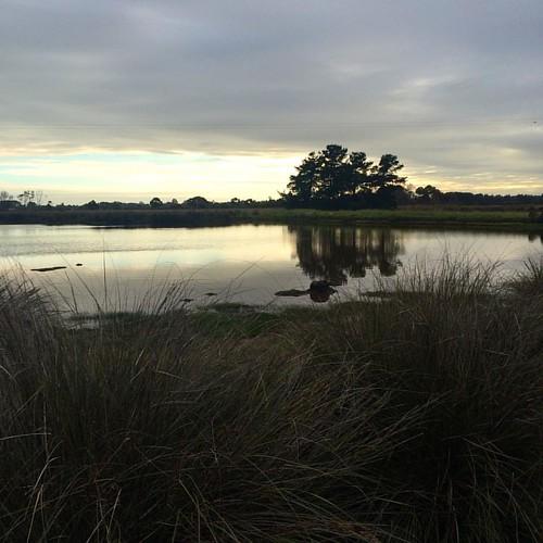 306/365 • morning walk • #306_2015 #boatyard #water #Spring2015 #goodmorning #grey #reflections #cloud #lightandshade