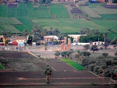 Colossi of Memnon Statues on West Bank of Nile in Luxor (Travel to Eat) Tags: balloons dawn morninglight earlymorning egypt luxor hotairballoons nileriver lushgreenfields