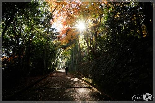 日本京都_石清水八幡宮.79