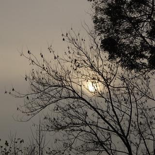 Cielo grigio su...